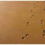 Follow the footsteps of Christ