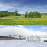 Can You Identify The Two Seasons of Preparation and Harvest?